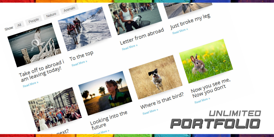 featured_header_portfolio_colors