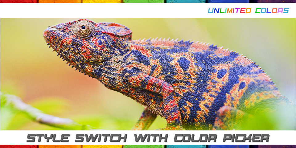 featured_header_cameleon_bgcolor_text